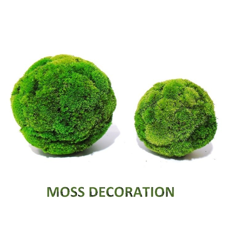 Sphere with preserved ball moss