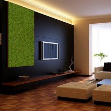 Vegetal Wall Model 2