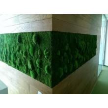 Vegetal Wall Model 3