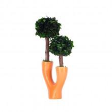 Dual small tree