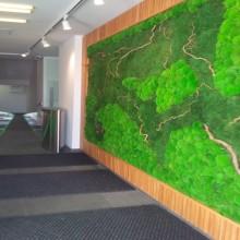 Multi-Vegetal Wall 1