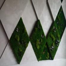 Multi-Vegetal Wall 2