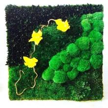 Tablou vegetal stabilizat 9